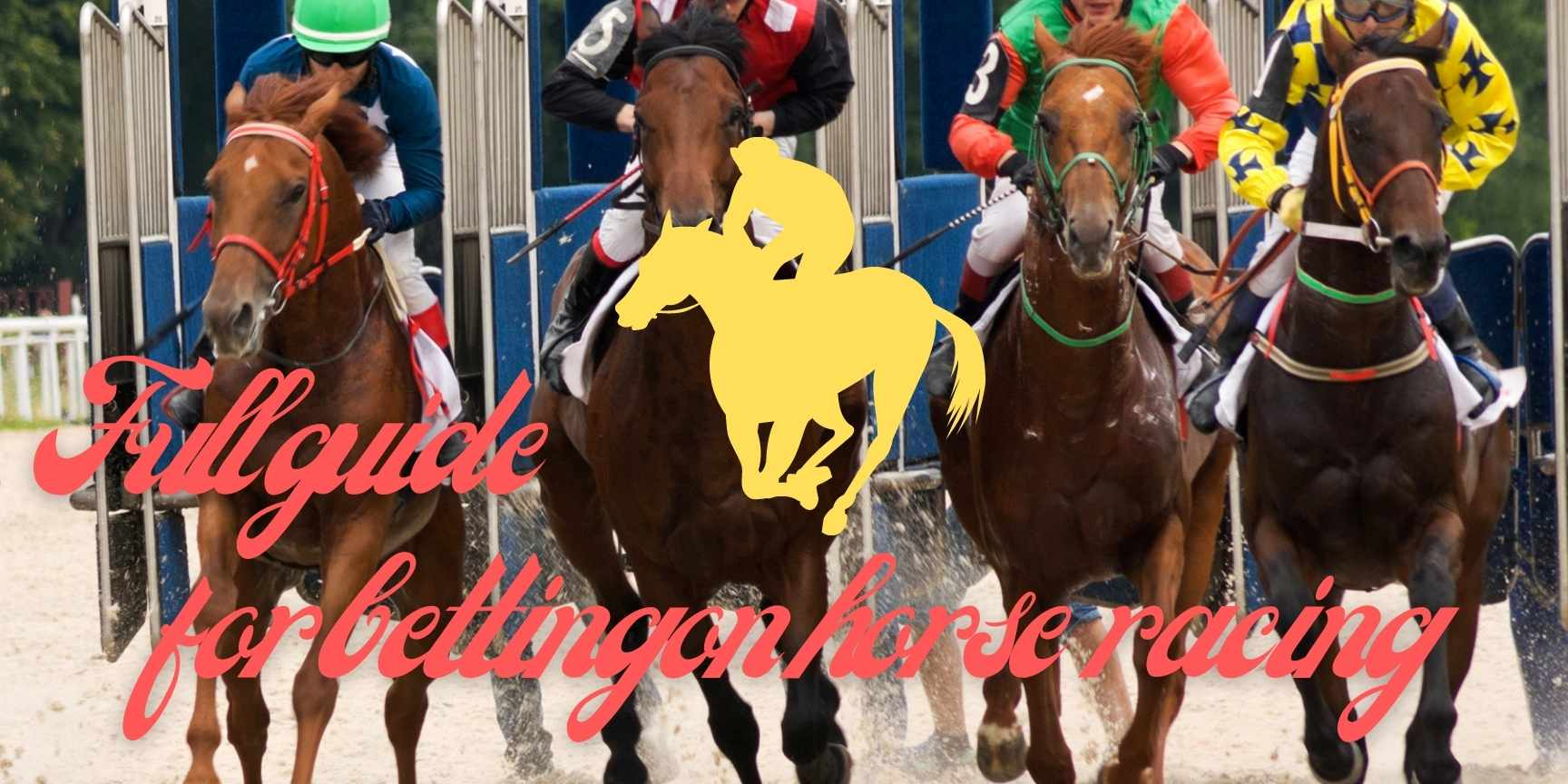 guide for horse racing